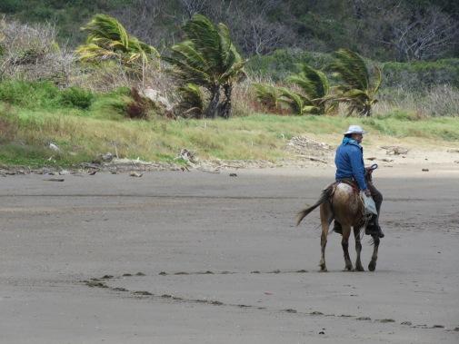 beach-cowboy