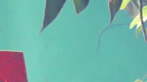 sea-green